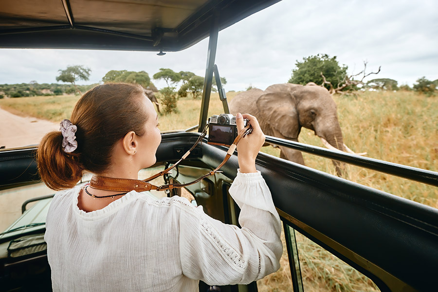 Safari game drive Grumeti Game Reserve