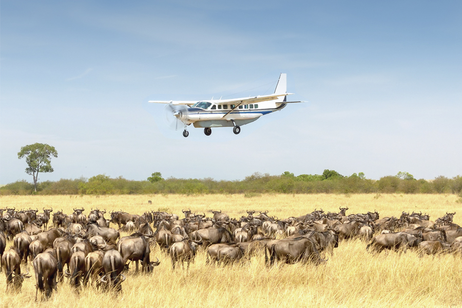 Fly-in-Safari-Serengeti