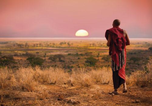 14 Day fly-in & drive safari<br>Northern Tanzania