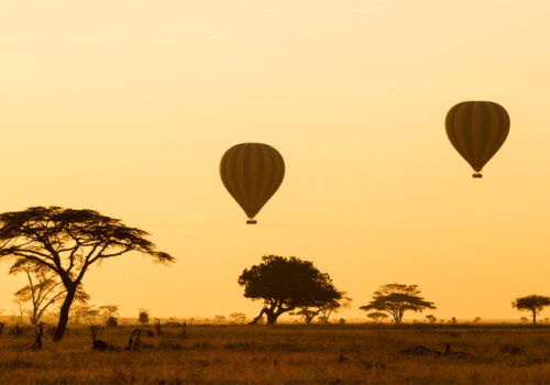 Drive & fly back safari Serengeti