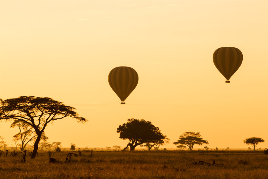 PARK - SERENGETI NATIONAL PARK