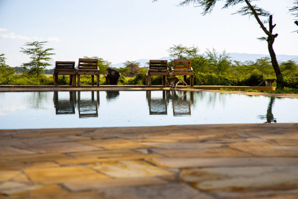 Africa Safari Lake Manyara Accommodation