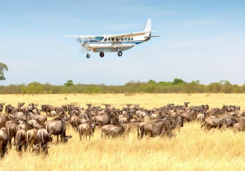 4 Day fly-in safari Serengeti